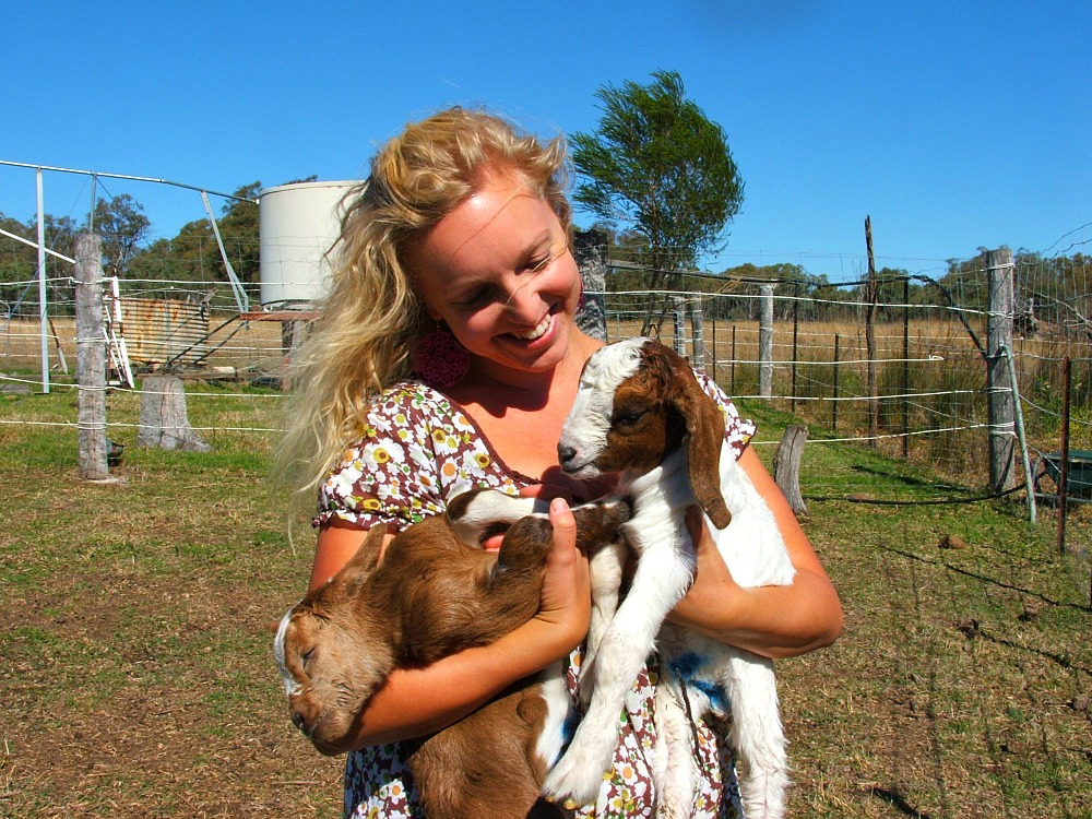 holding baby goats