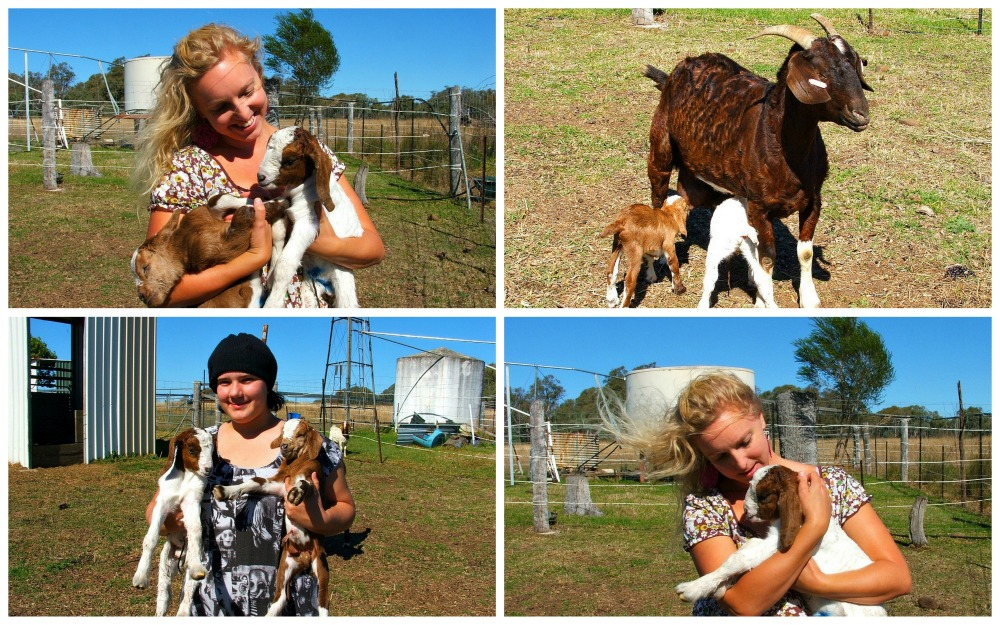 girls holding baby goats